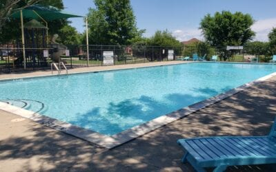Weekly Pool Maintenance in Dallas